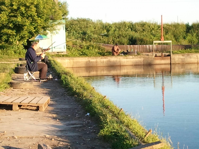 бисеровская платная рыбалка